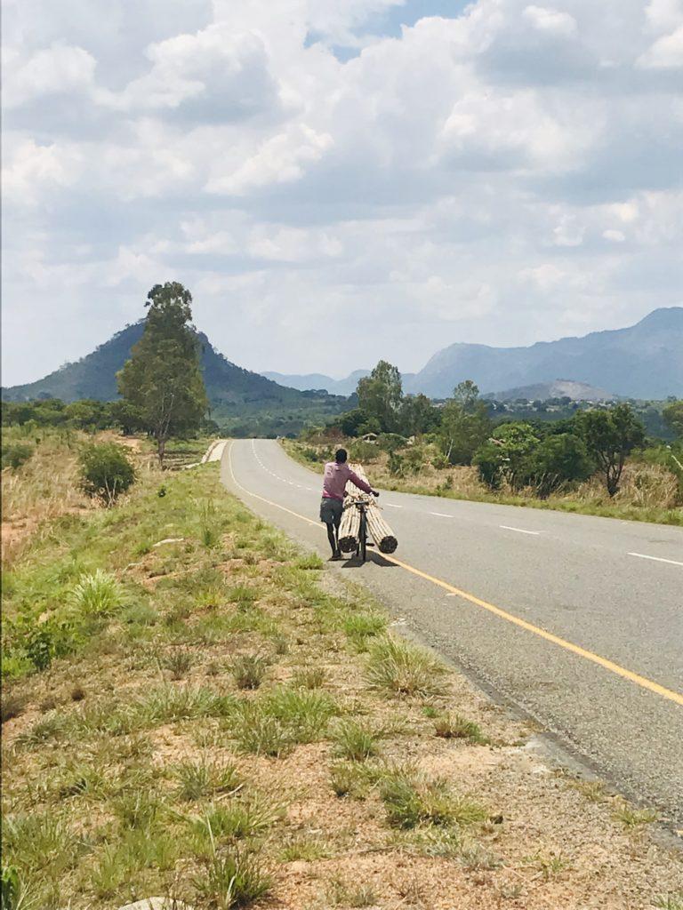 Dorfbewohner mit einer Fahrradladung nahe Nampula