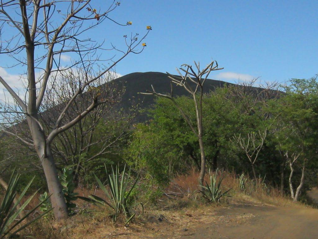 Cerro Negro mit Bäumen im Vordergrund