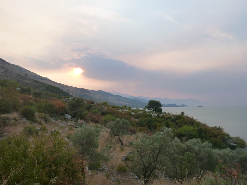 Skutarisee/Shkodrasee - Top 5 der Albanientipps