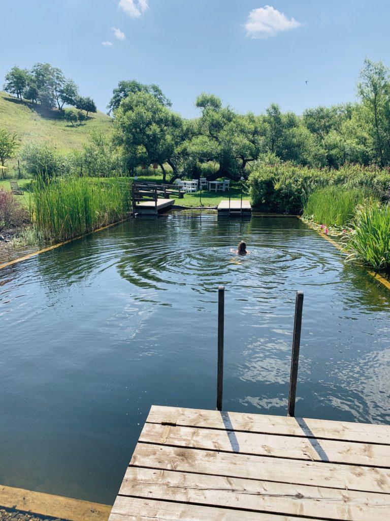 Der Teich von Valea Verde